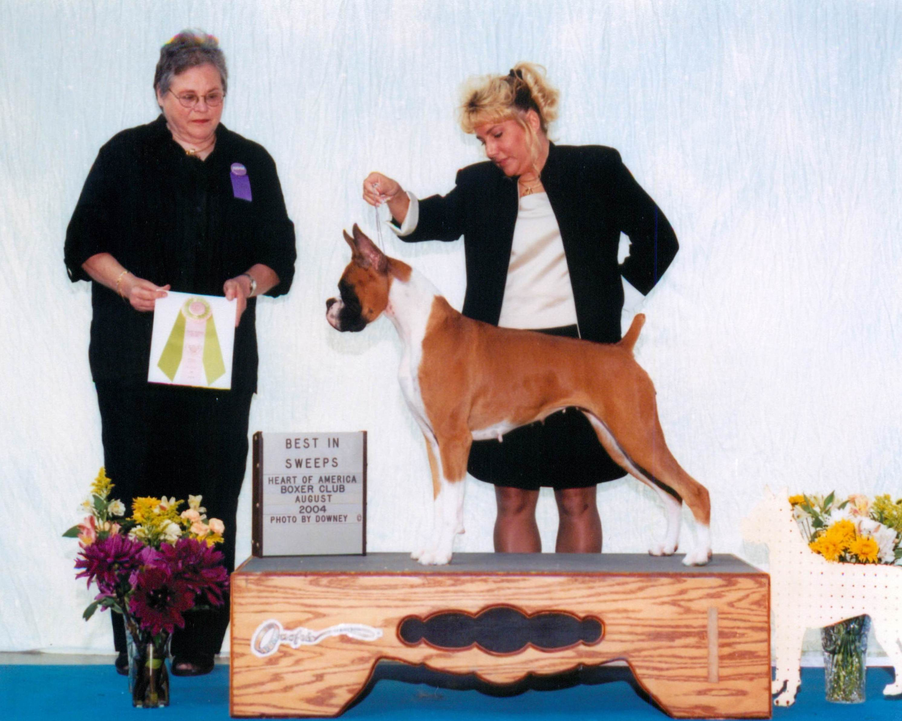Grand Sweepstakes & Best Junior @ 2004 Specialty Show #1