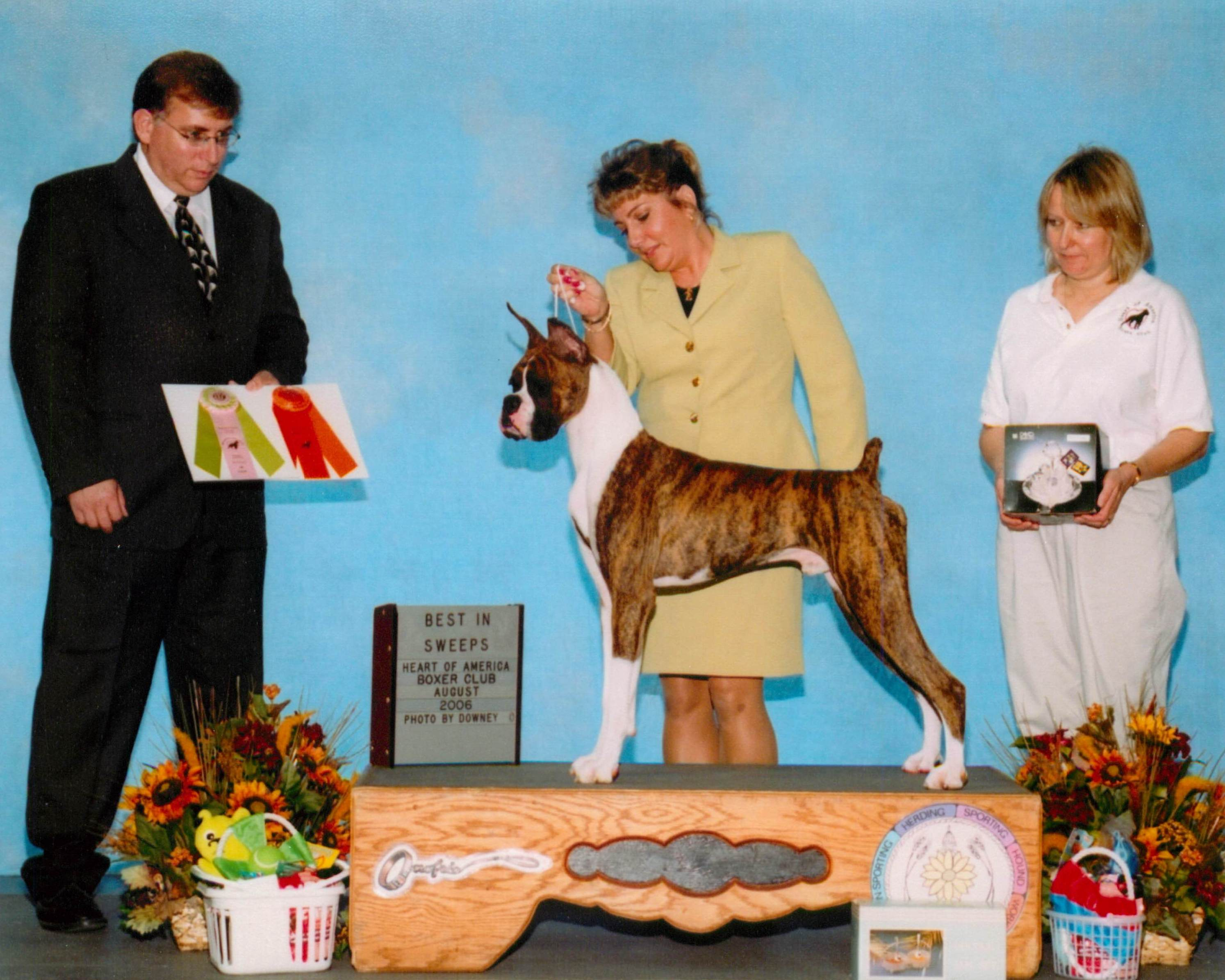 Grand Sweepstakes & Best Puppy @ 2006 Specialty Show #1