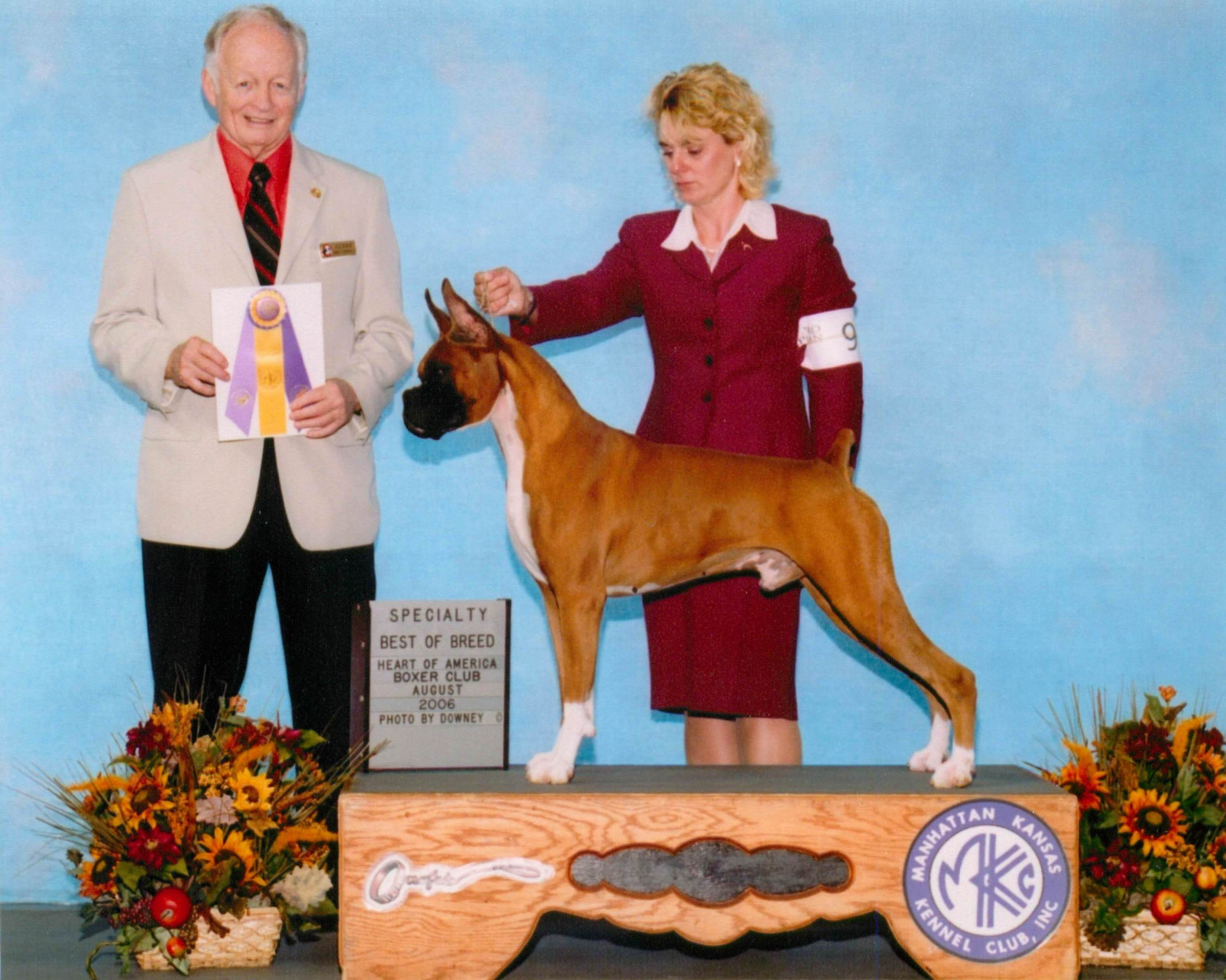 Best of Breed @ 2006 Specialty Show #2