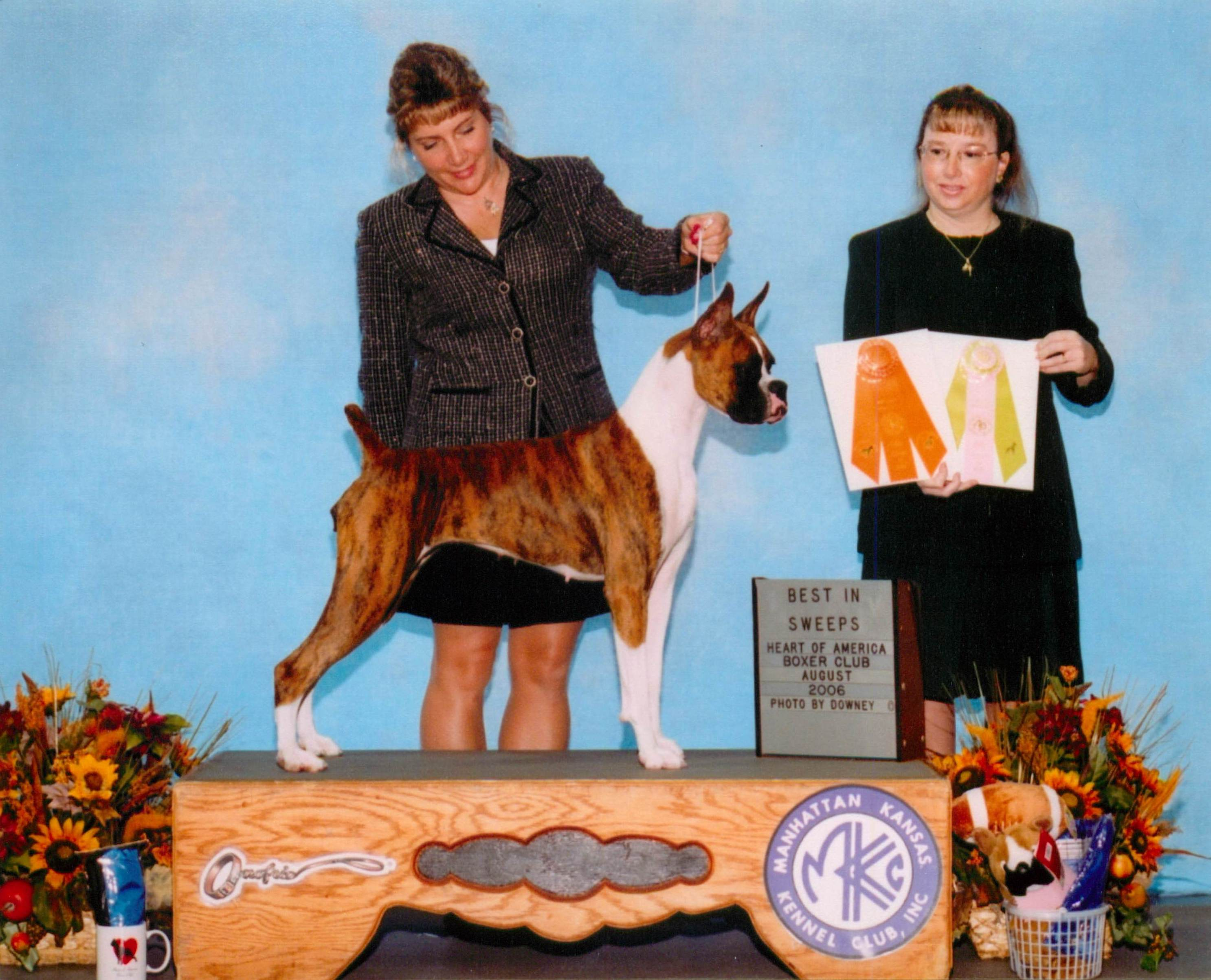 Grand Sweepstakes & Best Junior @ 2006 Specialty Show #2