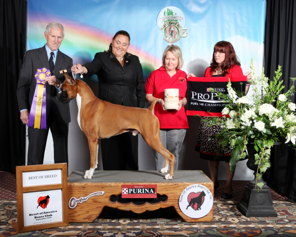 Best of Breed @ 2010 Specialty Show