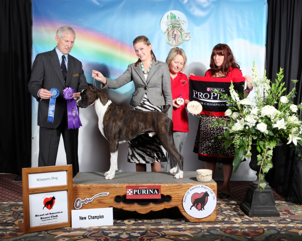 Winners Dog @ 2010 Specialty Show