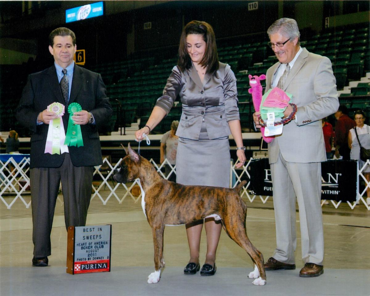Grand Sweepstakes, Best Puppy @ 2011 Specialty Show #1