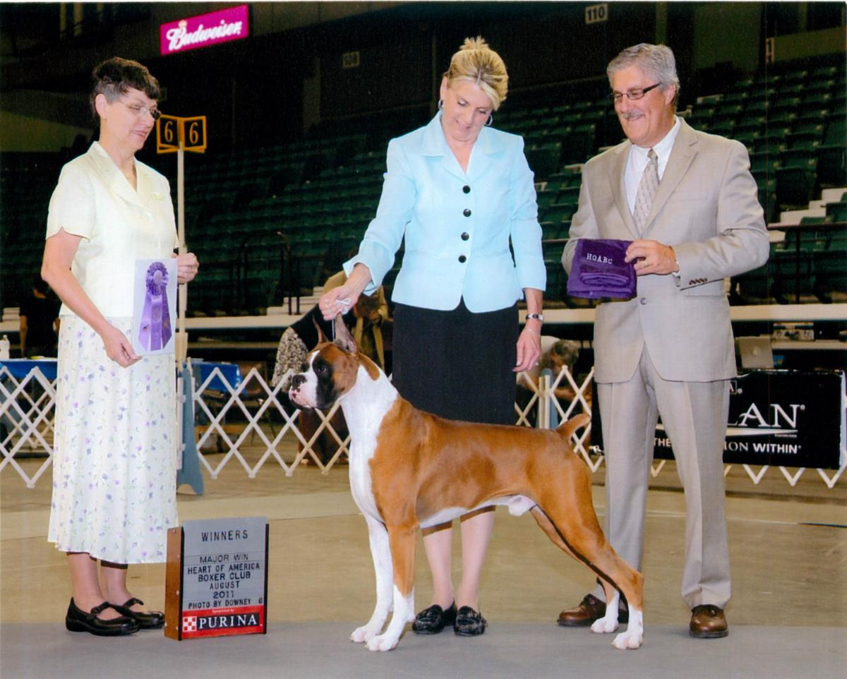 Winners Dog @ 2011 Specialty Show #1